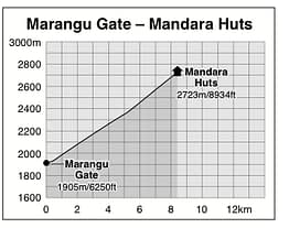 Marangu to Mandara Huts