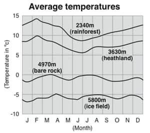 Chart showing average temperature on Kilimanjaro
