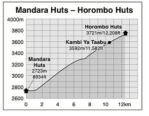 Mandara Huts to Horombo Huts
