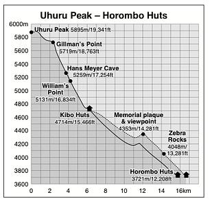 Uhuru Peak to Horombo Huts