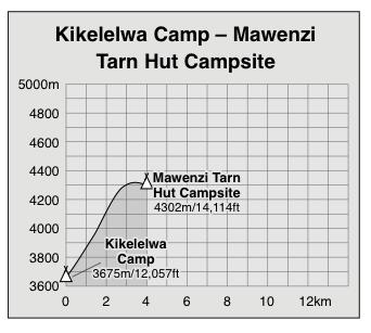 Kikelelwa Camp to Mawenzi Tarn Huts