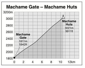 Machame Gate to Machame Huts
