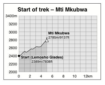 Lemosho Glades to mti Mkubwa