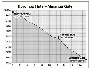 Horombo Huts to Marangu Gate