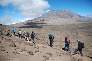 Kilimanjaro Trek Prices