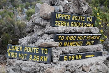 Which Kilimanjaro route is the best?