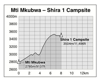 Mti Mkubwa to Shira 1