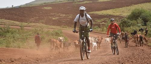 Cycling around the mountain – bike trip through an African Paradise